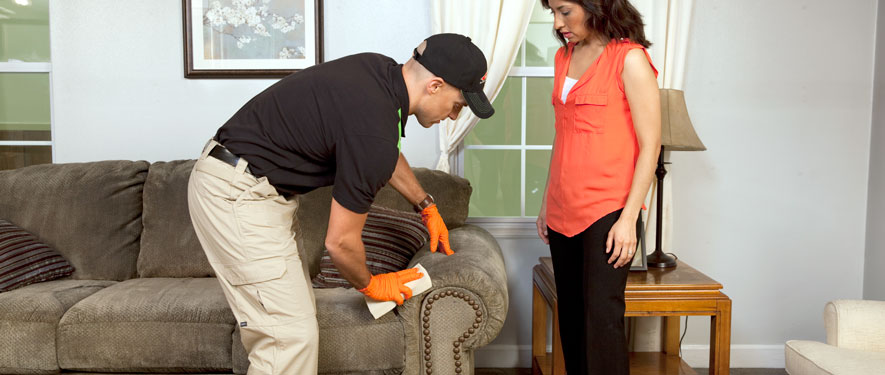 Mansfield, CT carpet upholstery cleaning