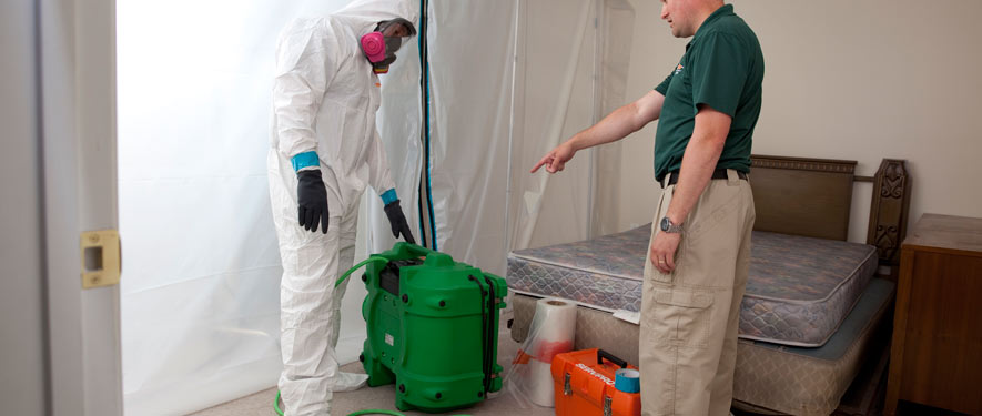 Mansfield, CT mold removal process